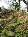 Public Bridleway From Newbiggin Hall Farm ... - geograph.org.uk - 122583.jpg