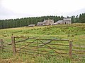 Pundershaw, Wark Forest - geograph.org.uk - 212647.jpg