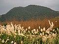 Qigu Mountain 七股山 - panoramio.jpg