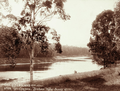 Queensland State Archives 2296 Enoggera Brisbanes water supply c 1897.png