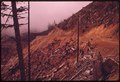 ROAD CUT RESULTS IN EROSION IN OLYMPIC NATIONAL TIMBERLAND WASHINGTON. NEAR OLYMPIC NATIONAL PARK - NARA - 555136.tif
