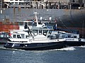 RT Borkum (tugboat, 2017) ENI 02336874, Botlek, Port of Rotterdam pic2.JPG