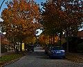 Radickestraße im Herbst - panoramio.jpg