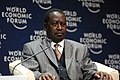 Raila Amolo Odinga - World Economic Forum on Africa 2008 2.jpg