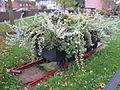 Railway wagon planter, Shevington (1).JPG