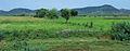 Rajastan - Views from an Indian Western Railway journey on a Monsoon Season (10).JPG