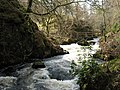Rapids on the River Doon - geograph.org.uk - 1348028.jpg