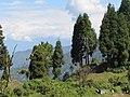 Ravangla, Sikkim by Masum Ibn Musa (164).jpg