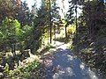Remscheid - panoramio (10).jpg