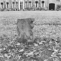 Restant tuinvaas, detail - Dwingeloo - 20308824 - RCE.jpg