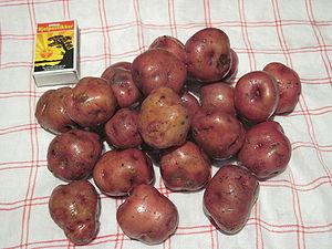 Ringerike (municipality) -  Ringerike potato