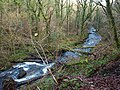River Bovey below Houndtor Wood - geograph.org.uk - 1086022.jpg