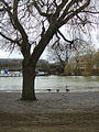 River Embankment - geograph.org.uk - 671336.jpg