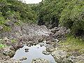 Rivière des Marsouins.jpg