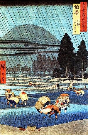 Hōki Province - Hiroshige (1797-1858):Rice field in Hoki province