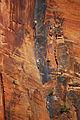 Rock Climbers (5205534266).jpg