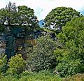 Rock face, trees and house (2643507470).jpg
