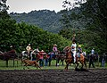 Rodeo Event Calf Roping 27.jpg
