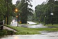 Roman Forest Flood - 4-18-16 (26239115740).jpg