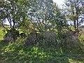 Ruine Einöde - panoramio.jpg