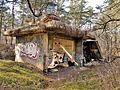 """Ruinen im Naturschutzgebiet """"Besenhorster Sandberge und Elbsandwiesen"""" (5).jpg"""