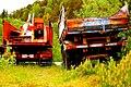 Rusty Trucks (59248756).jpeg