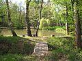 Sádky (rybník) (001).jpg