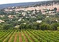 Saint-Saturnin-lès-Apt et son vignoble.jpg