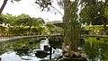 San Antonio Palace and Gardens swans.jpg