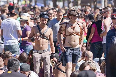 San Francisco Pride Parade 2012-15.jpg