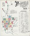 Sanborn Fire Insurance Map from Pittsfield, Berkshire County, Massachusetts. LOC sanborn03824 003-1.jpg