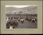 Scene during the cakewalk on Old Folks Day- July 6th, 1895 at the Lagoon, Farmington, Utah.jpg