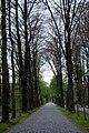 Schloss-Nordkirchen-2009-4-Parkanlagen-003.JPG