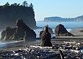 Sea stacks at Ruby Beach, Washington coast. Olympic National Park.jpg