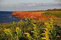 Seascape at sunset on Prince Edward Island.jpg