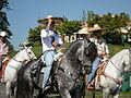 Seattle - Fiestas Patrias Parade 2008 - horses 10.jpg