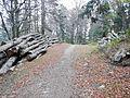 Sentier - panoramio (6).jpg