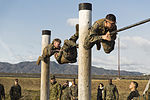 Service members battle to become Ironman Champion 140205-M-EP064-140.jpg