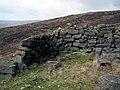 Shelter, Slievenaglogh - geograph.org.uk - 1205527.jpg