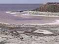 Shoreline of Lake Ourimiyeh - Western Iran - 01 (7421853852).jpg