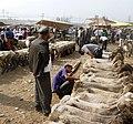 Shorn sheep for sale. Kashgar market.jpg