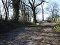 Short track off Howick Cross Lane - geograph.org.uk - 669714.jpg