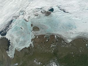Laptev Sea - The frozen Laptev Sea. Thinning of the ice reveals blue and green water color. New Siberian Islands are near the middle and the Great Siberian Polynya is in the left part of the image.