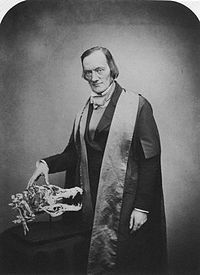 Sir Richard Owen by Maull & Polyblank.jpg