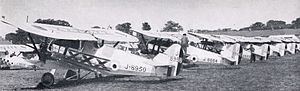 Armstrong Whitworth Siskin - A lineup of 29 Squadron Siskins, late 1920s.