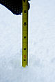 Six and a half inches snow in Seattle 2008.jpg