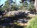 Skändla rös den 1 sept 2005, Hisingen näststörsta (runda) rös 18 diam, ca 2 m h, kallmurad och med 2 meters brätte.JPG