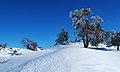 Ski camurac 05.jpg