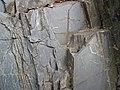 Slate (Knife Lake Formation, metamorphism at 2.7 Ga, Neoarchean; Rt. 135 roadcut, Gilbert, Minnesota, USA) 3 (23140002749).jpg