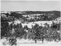 Snow covers the land and trees - NARA - 285994.tif